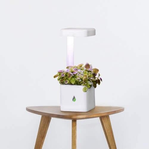 UrbiGo cube on chair